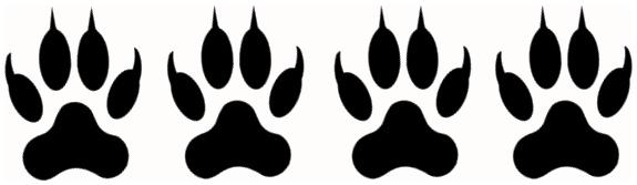Quatre pattes noires indiquant un niveau techniques adapté aux personnes avec une solide expérience de la marche en montagne.