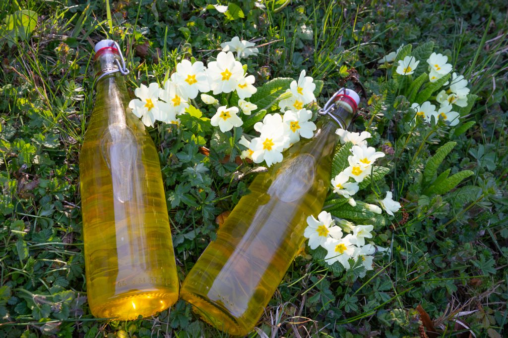 Deux bouteilles posées sur une touffe de primevères contenant un sirop réalisé pendant une activité plantes
